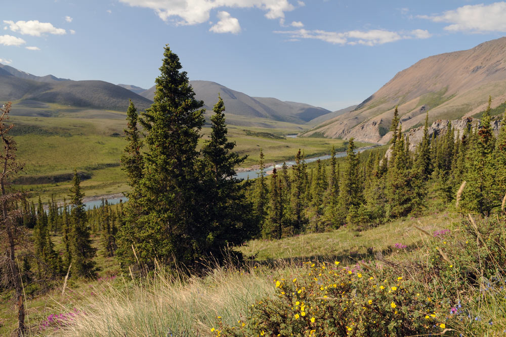 Firth River Valley, Firth River Rafting, Ivvavik National Park, Yukon Territory.