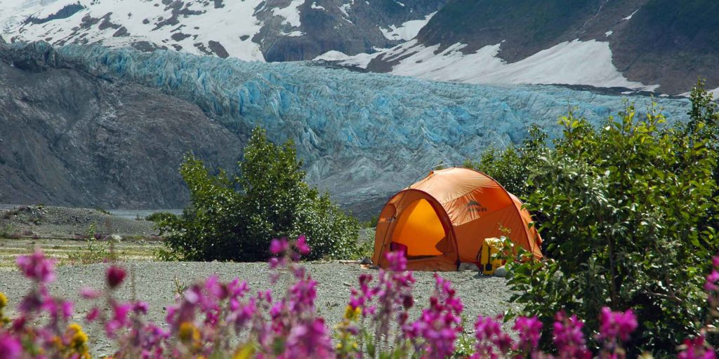 A campsite on the Tatshenshi River with the blue ice of Walker Glacier in the background, and wildflowers in the foreground.