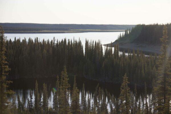 Visit the Arctic